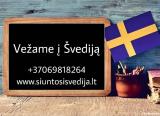 Peržiūrėti skelbimą - Kroviniai į Švediją  869818264